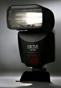 cactusaf50.jpg